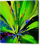 Glas Canvas Print