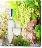 White Wine In Vineyard Canvas Print