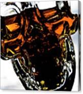 Glass Skull I Canvas Print