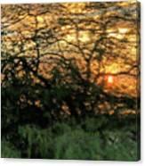 Glass Sunset Hawaii Canvas Print