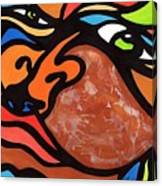 Glaze And Glances Canvas Print