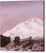 Glen Affric Sunrise Canvas Print