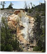 Glen Spring At Mammoth Hot Springs Upper Terraces Canvas Print