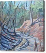 Glen Stewart Ravine Canvas Print