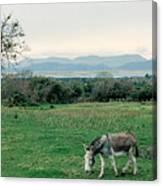 Glenbeigh Ireland Canvas Print