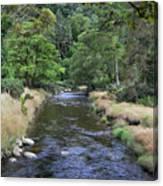Glendasan River. Canvas Print