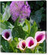 Globe Thistle And Calla Lilies Canvas Print