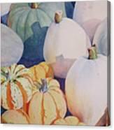 Glorious Gourds Canvas Print