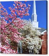 Glorious Sunday Morning In Spring Canvas Print