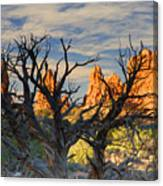 Glove Rock Canvas Print