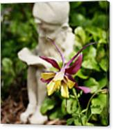 Gnome And Columbine Canvas Print
