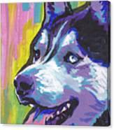 Go Husky Canvas Print