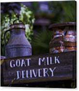 Goat Milk Delivery Canvas Print