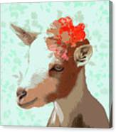 Goat With Flower Canvas Print