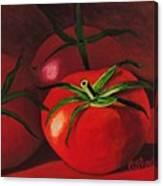 God's Kitchen Series No 3 Tomato Canvas Print