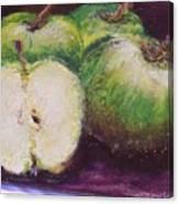 Gods Little Green Apples Canvas Print