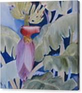 Going Bananas 2 Canvas Print