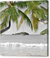 Going Green To Save Paradise Canvas Print