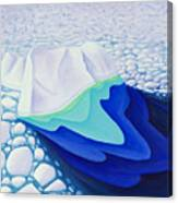 Going With The Floe Canvas Print