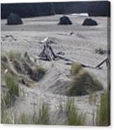 Gold Beach Oregon Beach Grass 18 Canvas Print