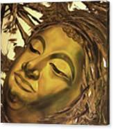 Virtues Of The Buddha Canvas Print