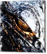 Gold Gator Eye Canvas Print