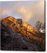 Gold In Them Thar Hills Canvas Print