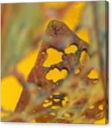 Gold Leaf 3 Canvas Print