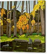 Gold On The River Meadow Park Lyons Co Canvas Print