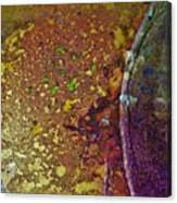 Gold Path Canvas Print