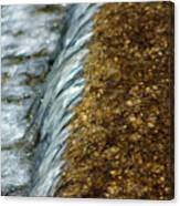 Gold Rush Abstract Canvas Print