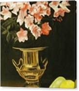Gold Vase With Fruit Canvas Print