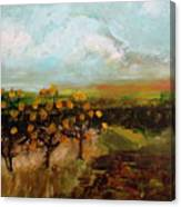 Golden Apples Canvas Print