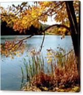 Golden Autumn Lake Canvas Print