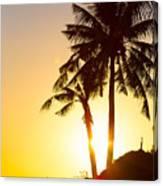 Golden Beach Tropics Canvas Print