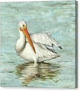 Golden Bill Canvas Print