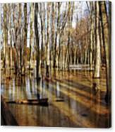 Golden Brown Pond Canvas Print