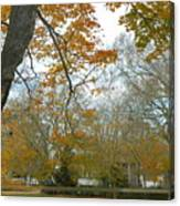 Golden Bus Stop Late Autumn Canvas Print