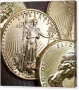 Golden Coins Canvas Print
