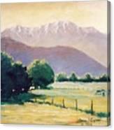 Golden Days Canvas Print