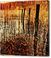 Golden Decay Canvas Print