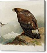Golden Eagle By Thorburn Canvas Print