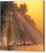 Golden Early Morning Sun Rays On The Farm Chesterhurst L B Canvas Print