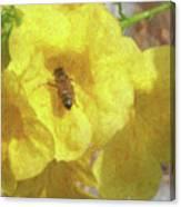 Golden Elder And Bee Canvas Print