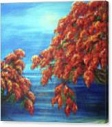 Golden Flame Tree Canvas Print