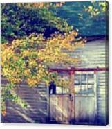Golden Fall Foliage  Canvas Print