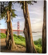The Trees Of The Golden Gate Canvas Print