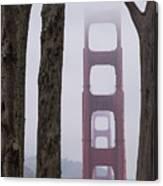 Golden Gate Through The Trees Canvas Print