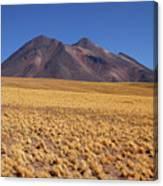 Golden Grasslands And Miniques Volcano Chile Canvas Print
