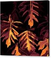 Golden Growth Canvas Print
